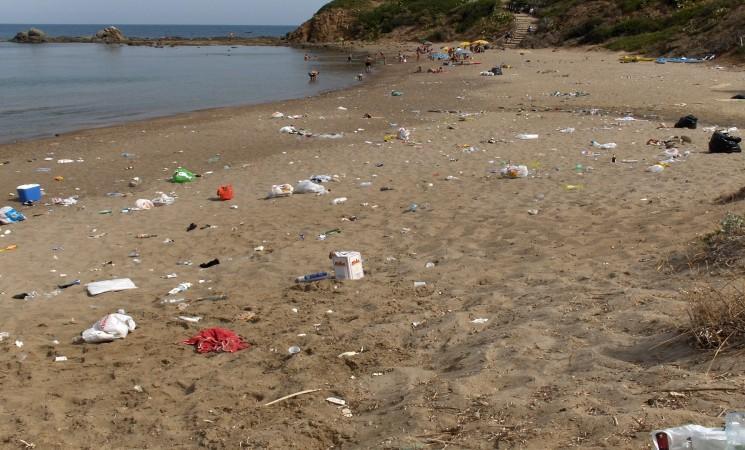 Rifiuti, spiaggia ripulita da turisti