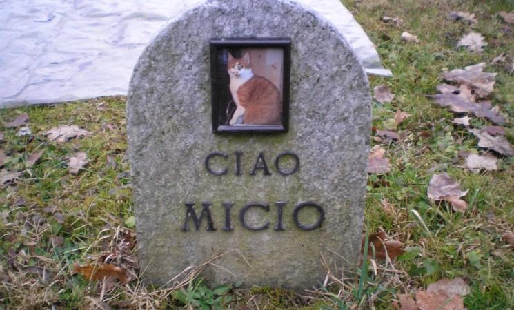 A Ragusa un cimitero per gli animali domestici
