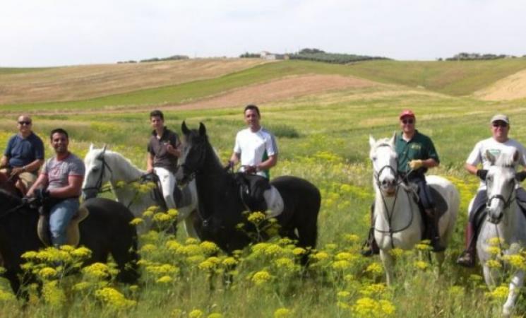 'La via delle miniere' a cavallo
