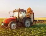 Sicilia, 30 mln per gli agricoltori delle aree interne e zone montane