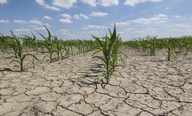 """Lotta alla siccità, in Sicilia il primo passo è """"tappare"""" le reti idriche colabrodo"""