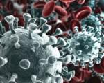 Coronavirus, il nuovo test dello Spallanzani e tutti gli altri test in uso