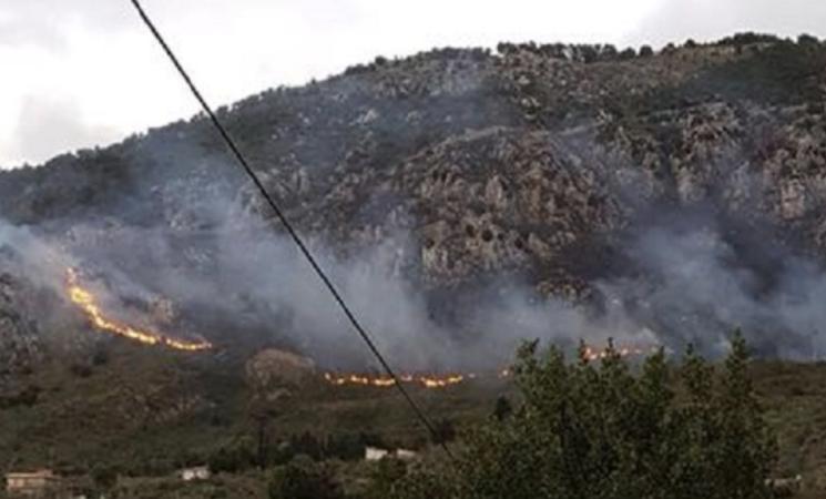 Incendi, a agosto bruciati quattromila ettari di bosco in Sicilia
