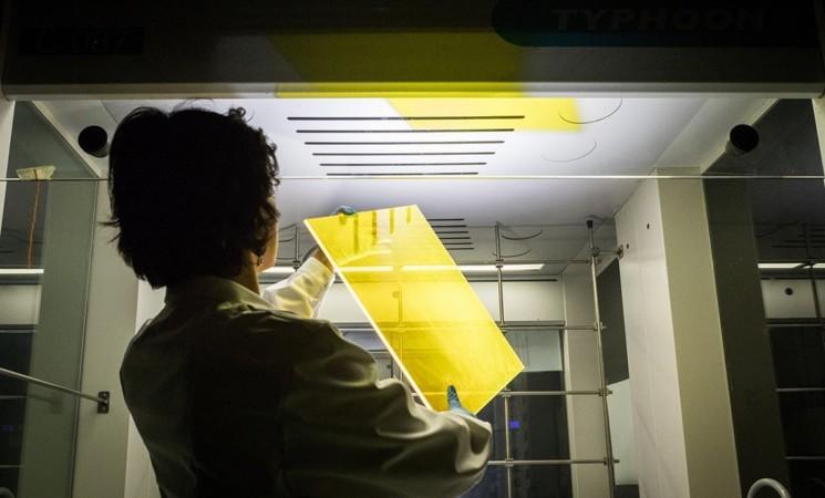 Pannelli solari organici e ultraleggeri per fornire luce ed energia rinnovabile