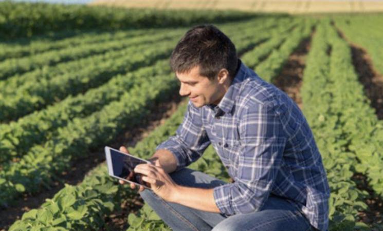 Indennità per agricoltori, le domande entro il 17 maggio