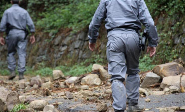 Procedura di mobilità volontaria per 100 posti di agente forestale
