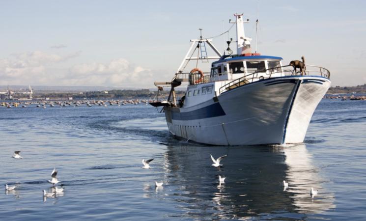 Pesca e commercio in alto mare, operazioni non imponibili ai fini Iva