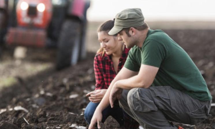 Impresa, nuove risorse per giovani agricoltori