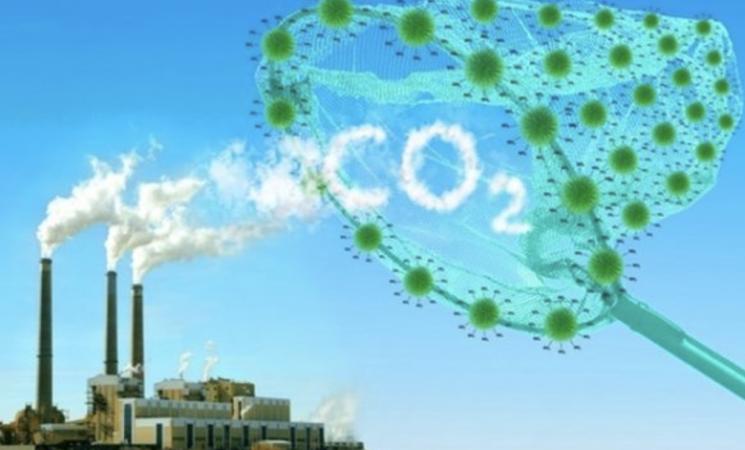 La CO2 una risorsa da recuperare come i rifiuti