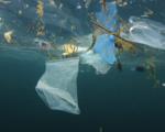 Bess, il progetto che salva le spiagge più belle della Sicilia