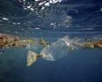 Lipari e Panarea, in prima fila per eliminare plastica monouso