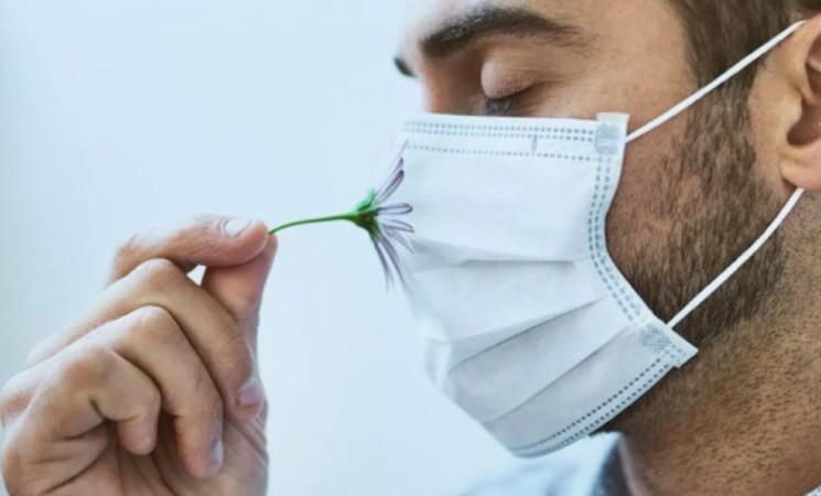 Allergie agli acari, sintomi, come distinguerli da quelli del Covid