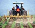 Coldiretti, nel 2020 +15% iscrizioni a istituti agrari