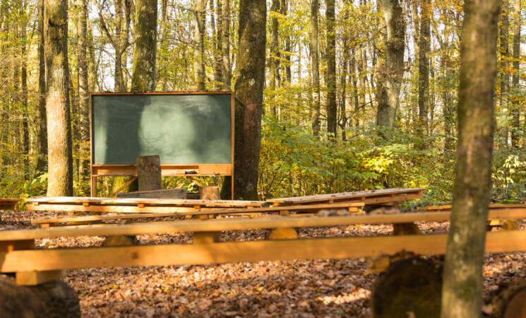 Didattica all'aperto in un bosco urbano nel progetto di Milano-Bicocca