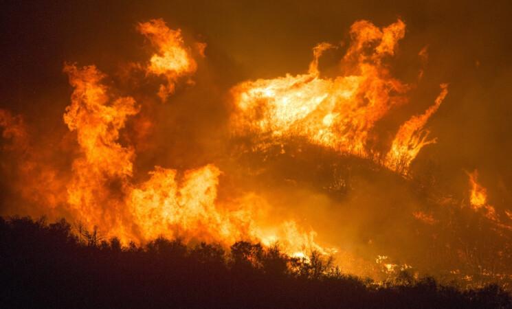 Incendi boschivi, oggi cinque richieste di intervento aereo in Sicilia