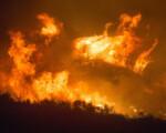 """Incendi, Legambiente """"in Sicilia caldo, delinquenti e ritardi"""""""