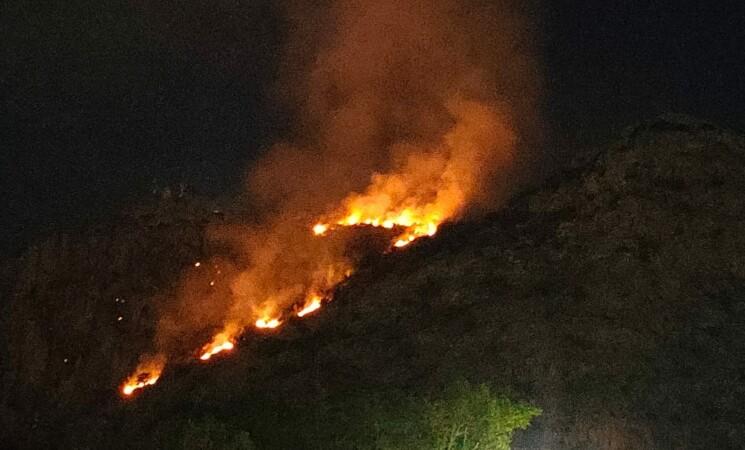 Incendi, ancora fiamme sulle Madonie. Domani Patuanelli a Palermo