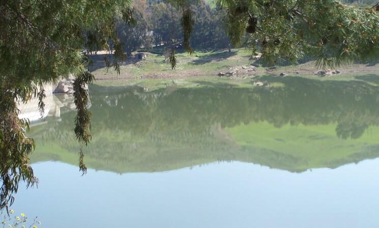 Ambiente, allarme siccità dal fiume Alcantara alla Diga Pozzillo