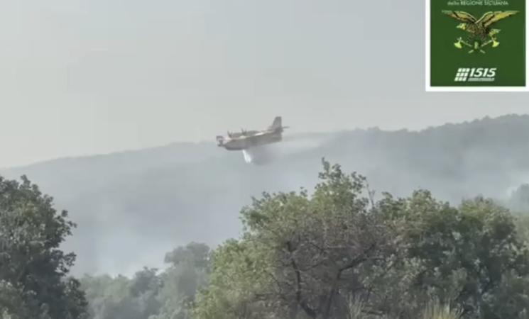 Incendi, dalle Madonie al Parco dell'Etna. Canadair in azione in Sicilia