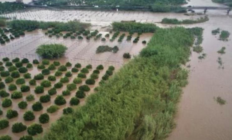 Maltempo, Coldiretti, sale conto danni da temporali e siccità