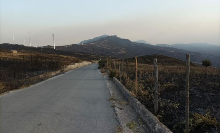 Gli incendi devastano i Nebrodi, danni incalcolabili a Castel di Lucio