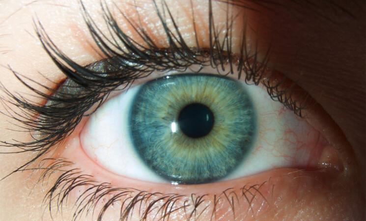 Sicilia, screening gratuiti per patologie oculari, ecco dove e quando