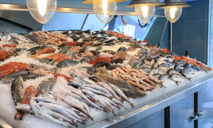 Pesca, festival del pesce azzurro a Marzamemi