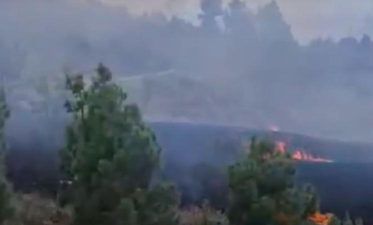 Eruzione vulcano Canarie, nube tossica potrebbe arrivare in Sicilia